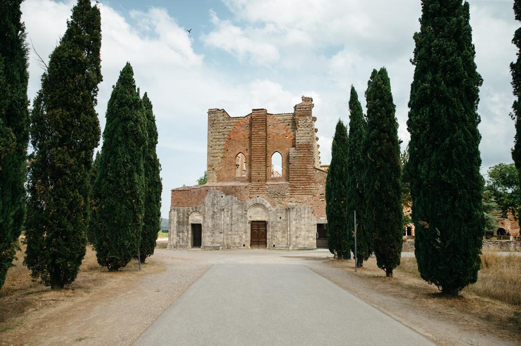 Un viale alberato porta all'Abbazia di San Galgano